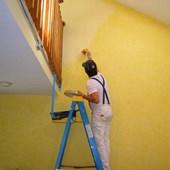 House Painters St Louis